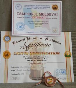 certyfikat Mołd.